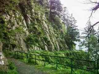 Holiday Tour Package Nathiagali (3D/2N)