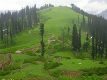 Shogran Naran & Nathiagali Honeymoon Tour (5 Days/4 Nights)